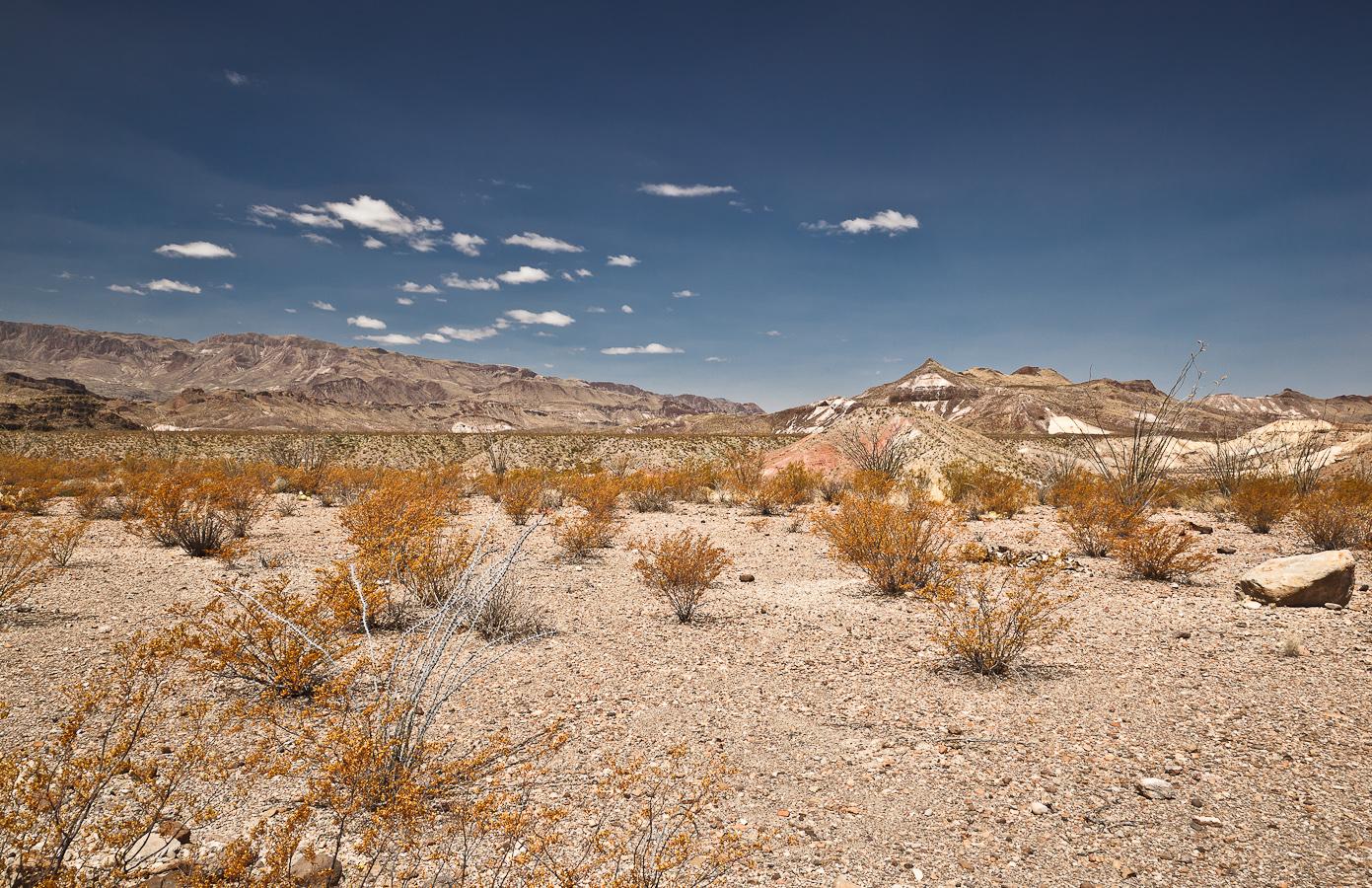 desert_sands_large.jpg